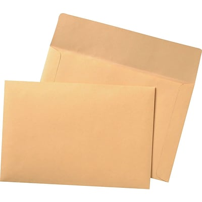 Extra-Heavyweight Flat Filing Envelopes, 100/Box
