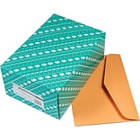 Quality Park Products® 15 x 10 Brown 50 lbs. Open Side Booklet Envelopes, 100/Box