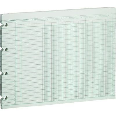 Wilson Jones® 10 Columnar Ruled Sheets Green Ledger Paper, 100 Sheet