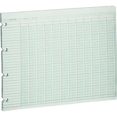Wilson Jones Columnar Sheets, Ledger Paper, Ruled, 30 Lines, 20 Columns, Green Paper, 9 1/4 x 11 7/8, 100/Pk