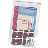 Smead AlphaZ ACCS Color-Coded Alphabetic Labels, H, Dark Brown, 100/Pk (67178)