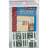 Smead AlphaZ ACCS Hand Written Identification & Color Coding Label, 1 5/8 x 1, Gray, 100/Pack (671