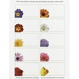 Great Papers® Floral Mini Cards, 100/Pack