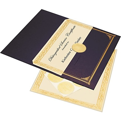 Geographics® 8 1/2 x 11 Foil Embossed Award Certificate Kit, Blue Metallic
