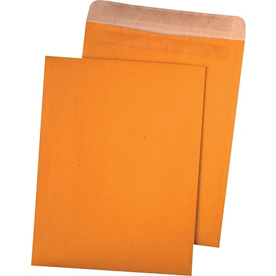 Quality Park™ 100% Recycled Redi-Seal™ Envelopes, 9 x 12, 100/Box