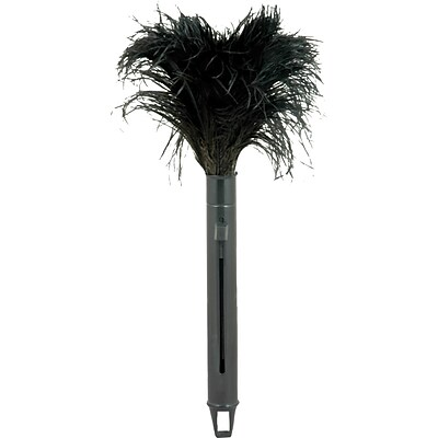 Pop Top Feather Duster
