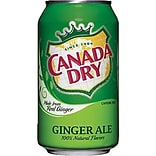 Canada Dry® Ginger Ale Fridge Pack Bundle, 12 oz. Cans, 12/Pack, 2 Packs/Carton