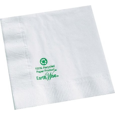 Hoffmaster Earth Wise Beverage Napkin
