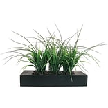 Laura Ashley® 11 Green Grass in Contemporary Wood Planter