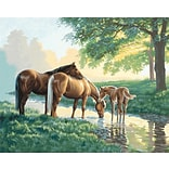 Dimensions Paint By Number Kit, 20 x 16, Horses By A Stream