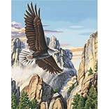 Dimensions Paint By Number Kit, 16 x 20, Soaring Eagle