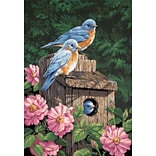 Dimensions Paint By Number Kit, 14 x 20, Garden Bluebirds