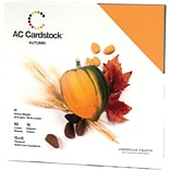 American Crafts® Cardstock Pack, 12 x 12, Autumn