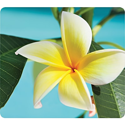 Fellowes Recycled Mouse Pad, Yellow Flowers (FEL5913801)