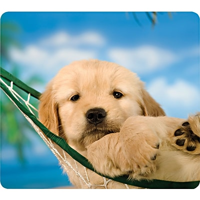 Fellowes Recycled Mouse Pad, Puppy in Hammock (FEL5913901)