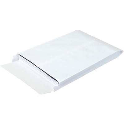 10 x 13 x 1 1/2 Expandable Ship-Lite® Envelope, 100/Case