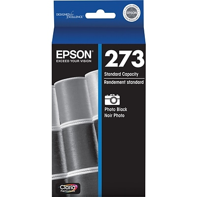 Epson 273 Photo Black Ink Cartridge, Standard (T273120-S)