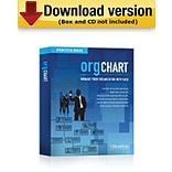 OrgChart Professional 250 (Download Version)