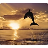 Fellowes Recycled Optical Mouse Pad; Dolphin