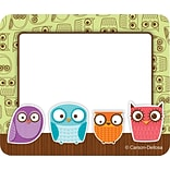 Carson-Dellosa Owls Name Tags; 40/Pack