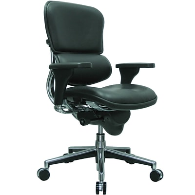 Raynor Eurotech Leather Mid Back Ergo human Chair, Black