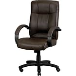 Raynor Eurotech Odyssey Leather Executive Chair, Brown