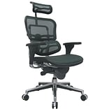 Raynor Eurotech Ergo human High Back Managers Chair, Headrest and Mesh, Green