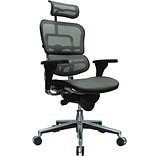Raynor Eurotech Ergo human High Back Managers Chair, Headrest and Mesh, Gray