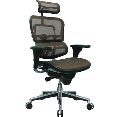 Raynor Eurotech Ergo human High Back Managers Chair, with Headrest and Mesh, Orange