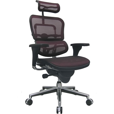 Raynor Eurotech Ergo human High Back Managers Chair, with Headrest and Mesh, Plum Red
