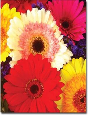 "Trademark Global Amy Vangsgard ""Brightly Colored Gerbers"", Canvas Art, 18"" x 24"""