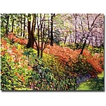 Trademark Global David Lloyd Glover Magic Flower Forest Canvas Art, 35 x 47