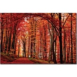Trademark Global Philippe Sainte Laudy The Red Way Canvas Art, 22 x 32