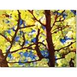 Trademark Global Amy Vangsgard Spring Tree Canvas Art, 24 x 32