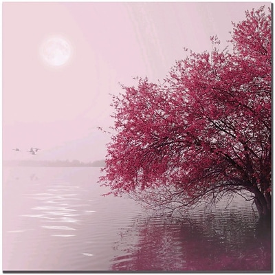 Trademark Global Philippe Sainte Laudy Full Moon on the Lake Canvas Art, 18 x 18