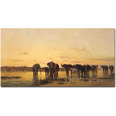 Trademark Global Charles Emile de Tournemine African Elephants Canvas Art, 24 x 47