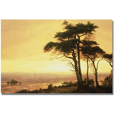 Trademark Global Albert Biersdant California Coast Canvas Art, 16 x 24