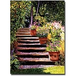 Trademark Global David Glover Pink Daisies Wooden Steps Canvas Art, 32 x 24