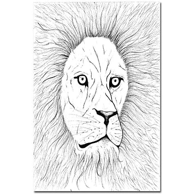 Trademark Global Joe Dragunas Lion Canvas Art, 24 x 18
