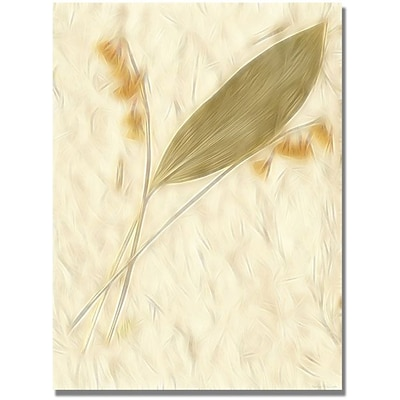 Trademark Global Kathie McCurdy Lily of the Valley Canvas Art, 47 x 35