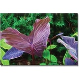 Trademark Global Kathie McCurdy Hawaiian Garden II Canvas Art, 16 x 24