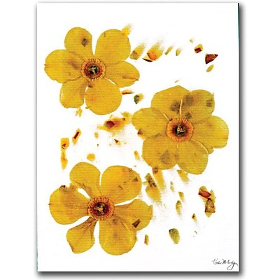 Trademark Global Kathie McCurdy Daffodils on Paper Canvas Art, 24 x 18