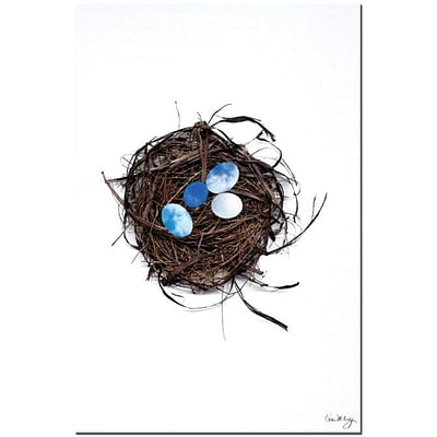 Trademark Global Kathie McCurdy Best Nest Canvas Art, 24 x 16