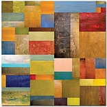 Trademark Global Michelle Calkins Pieces Project III Canvas Art, 35 x 35
