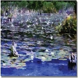 Trademark Global Michelle Calkins Water Lilies in the River Canvas Art, 18 x 18
