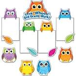 Carson-Dellosa Colorful Owls Good Work,  Bulletin Board Set