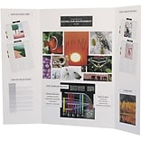 Flipside® Science Fair Materials, Presentation Project Boards, White, 24/Carton