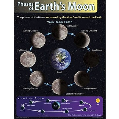 Trend® Learning Charts, Phases of Earths Moon