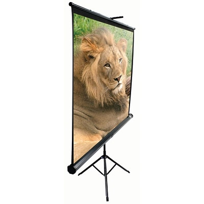 Elite Screens™ TriPod Series 99 Pull Up Portable Projector Screen; 1:1; Black Casing