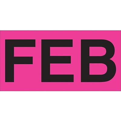 Tape Logic™ 3 x 2 Rectangle FEB Months of the Year Label, Fluorescent Pink, 500/Roll